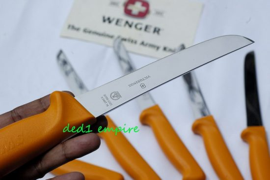 SWIBO-Victorinox - pisau lapah tegak 6 inci
